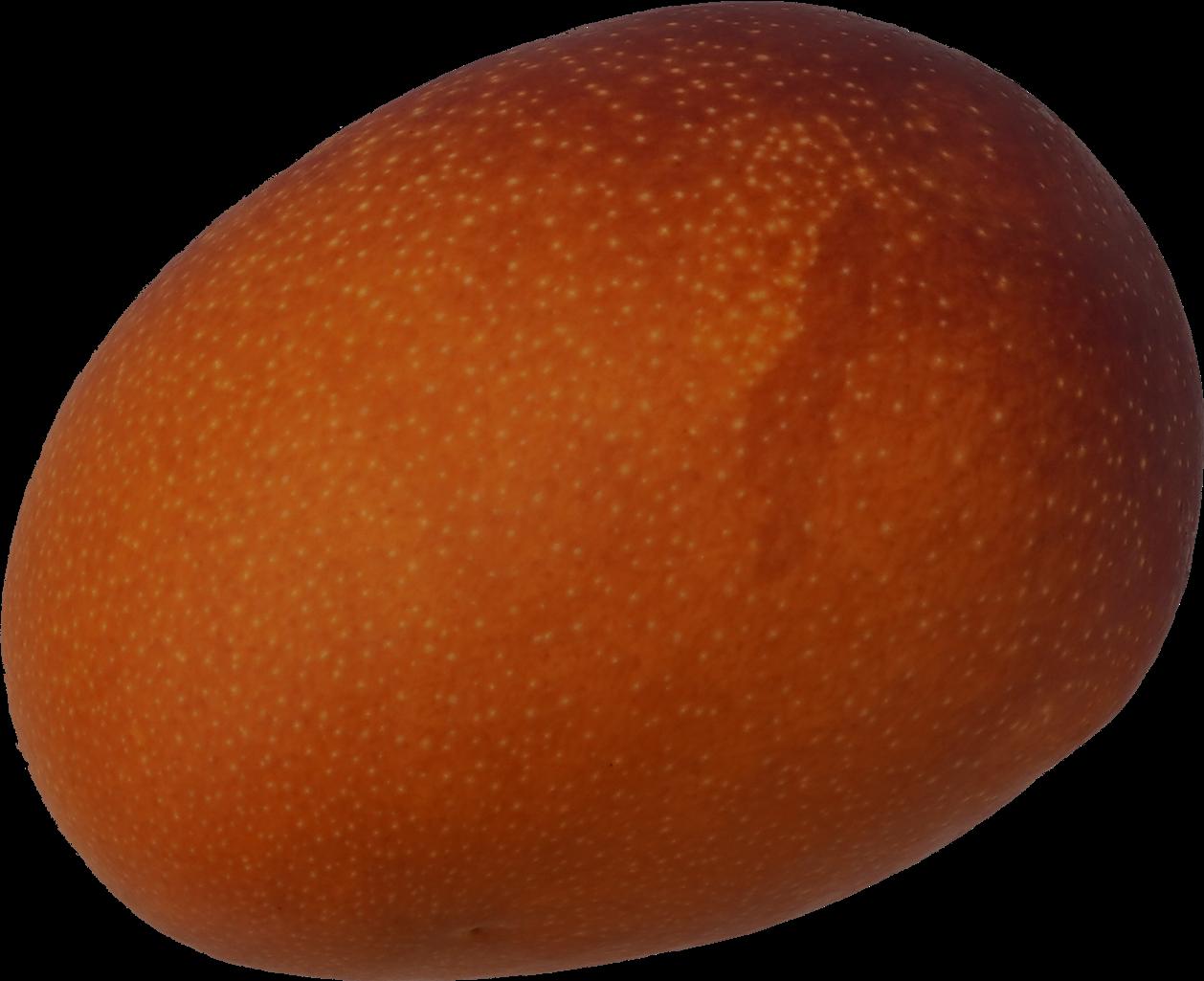 マンゴー 商用可フリー画像・背景透過