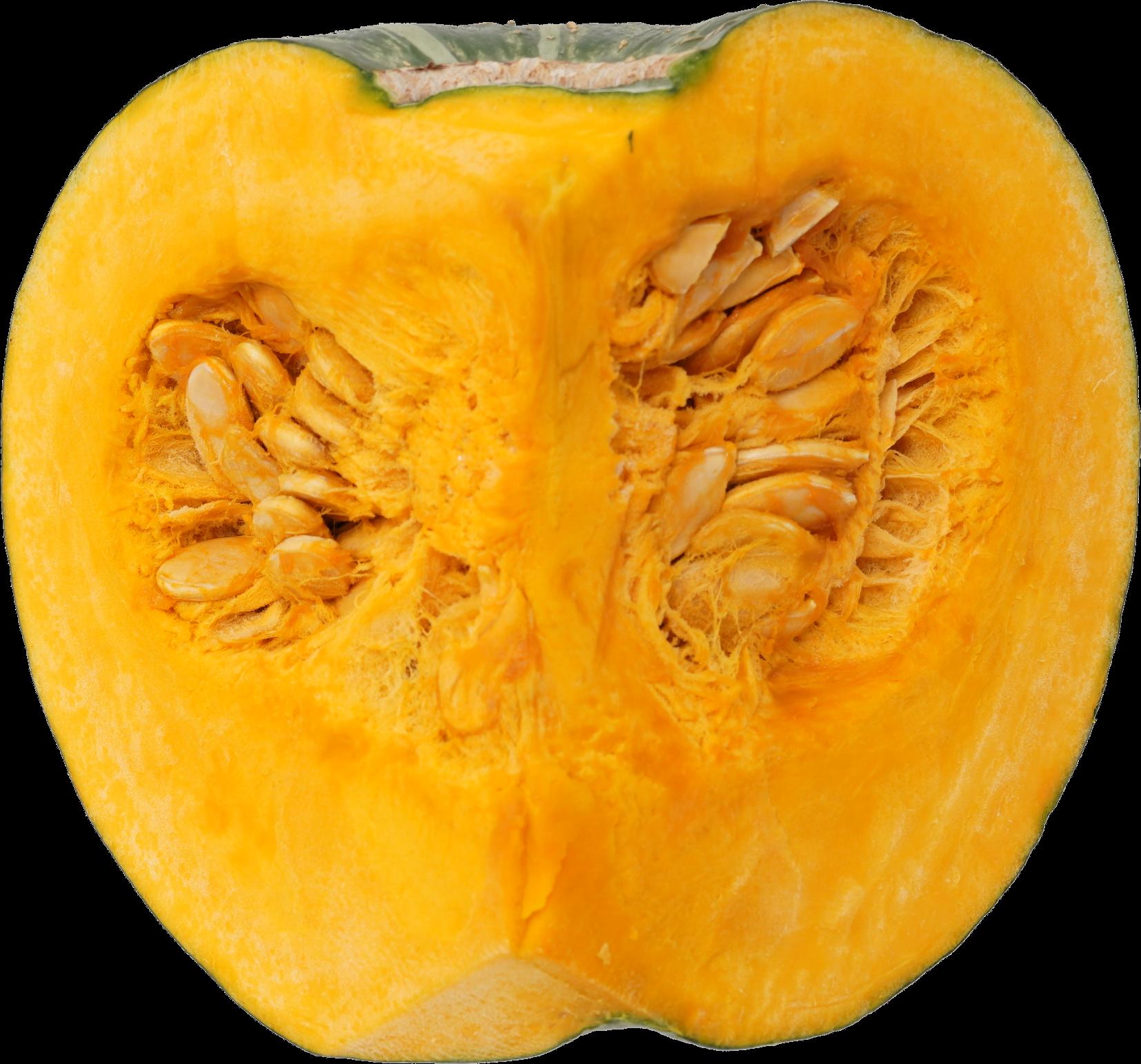かぼちゃ|商用可フリー画像・背景透過