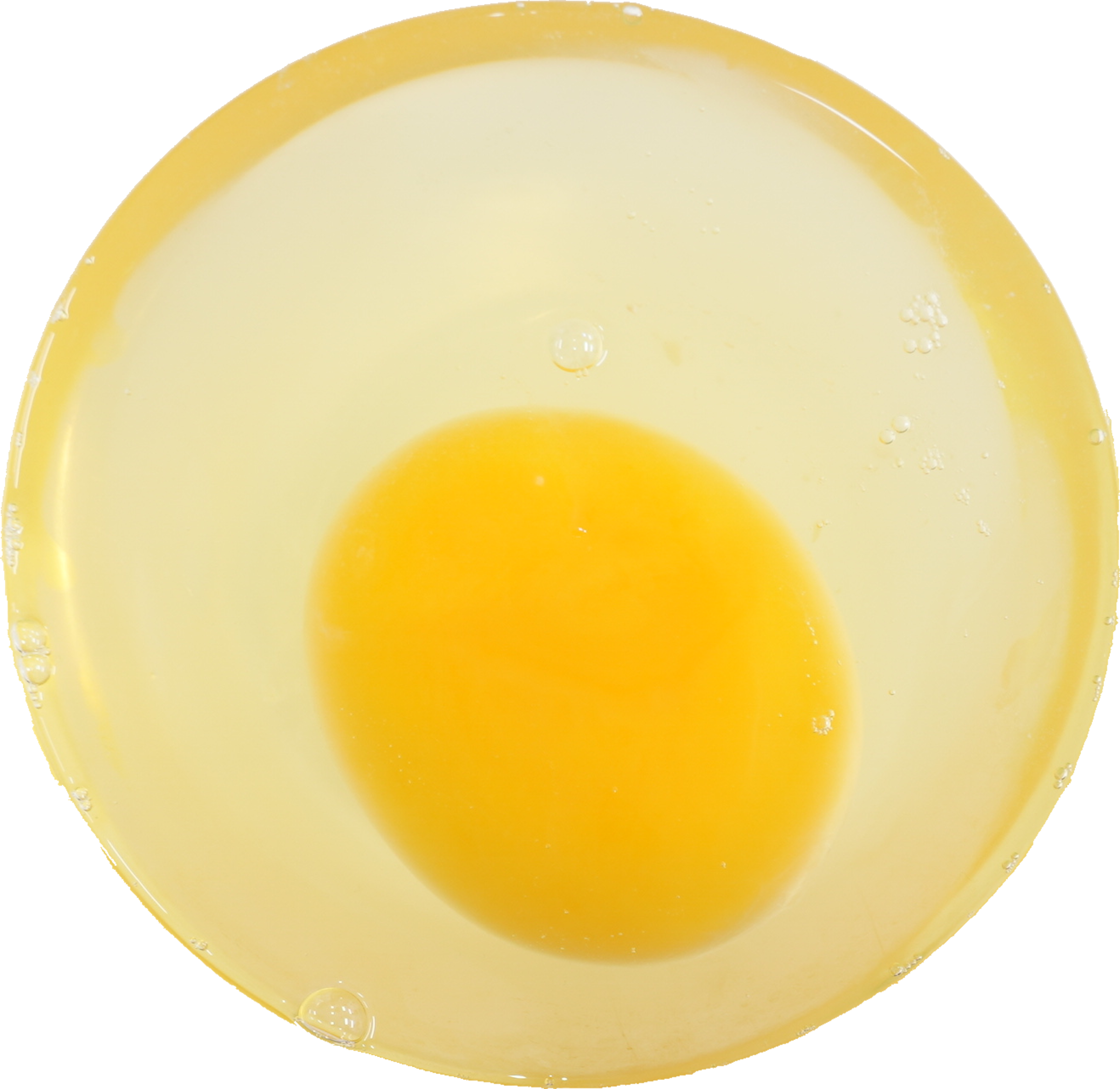 ダチョウ卵|商用可フリー画像・背景透過