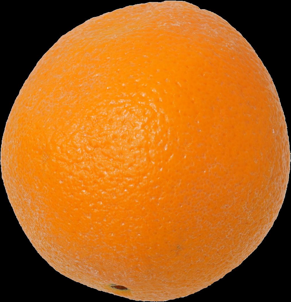 オレンジ|商用可フリー画像・背景透過