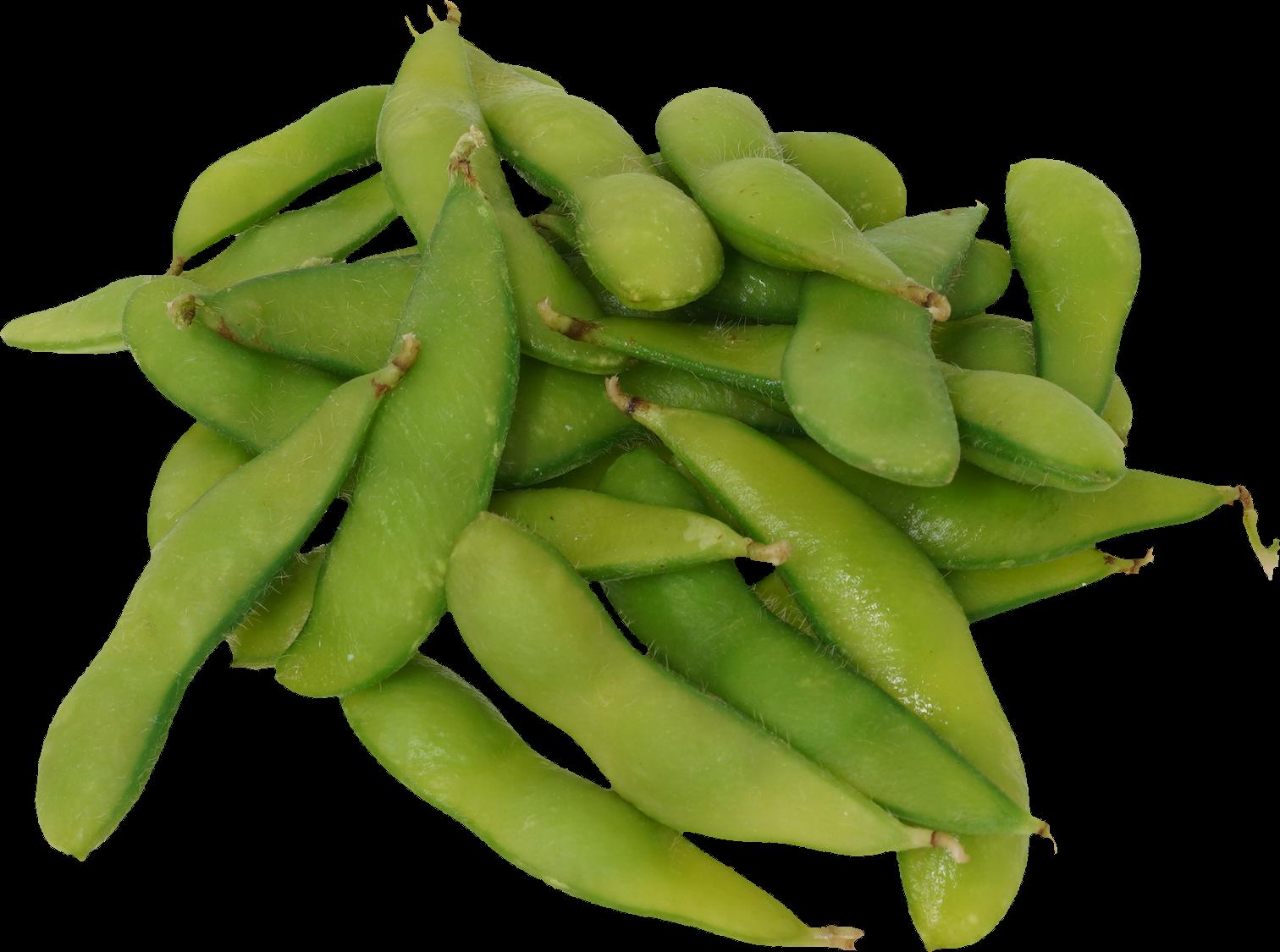 枝豆 商用可フリー画像・背景透過